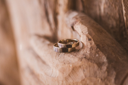 married couples: Beautiful wedding rings. wedding day