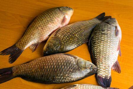 Fresh carp Carp has tasty dietary meat. Fishing carp great pleasure. Imagens