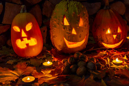 Three glowing pumpkins on halloween night with candles on a background of firewood and autumn foliage. Halloween pumpkin lanterns. 免版税图像