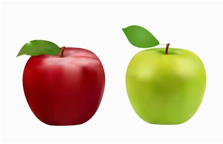green and red apple, fresh fruits, vector illustration