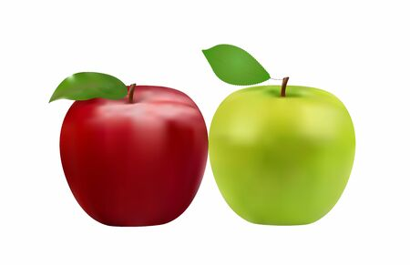 green and red apple close-up, fresh fruits, vector illustration