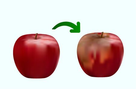 rotten red apple, fresh red apple, closeup drawing