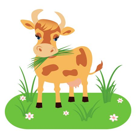 Cow isolated on a white background, pet. Vector illustration in cartoon style. Çizim