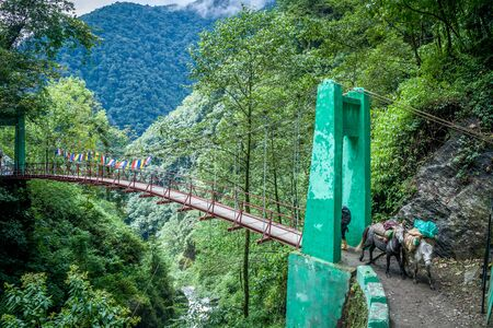 The first bridge from Yuksom to Sachen over Pha Khola. we came across this bridge on the first day of beautiful Goechala Trek.