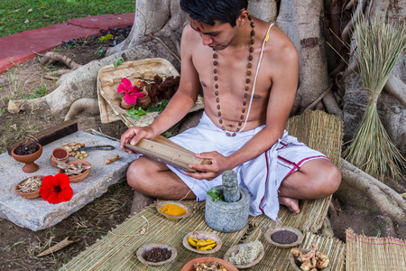 sanskrit: A young brahmin reads an ancient Hindu text surrounded by natural medicinal ingredients. Stock Photo