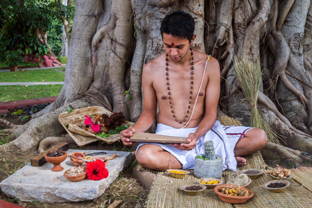A young brahmin reads an ancient Hindu text surrounded by natural medicinal ingredients. Stockfoto