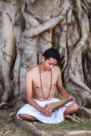 vedas: A young brahmin reads an ancient Hindu scripture under a banyan tree.