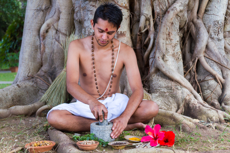 traditional remedy: A young man preparing ayurvedic medicine in the traditional manner under a banyan tree.