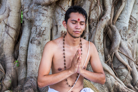 banyan tree: A young brahmin sits in meditation under a banyan tree.