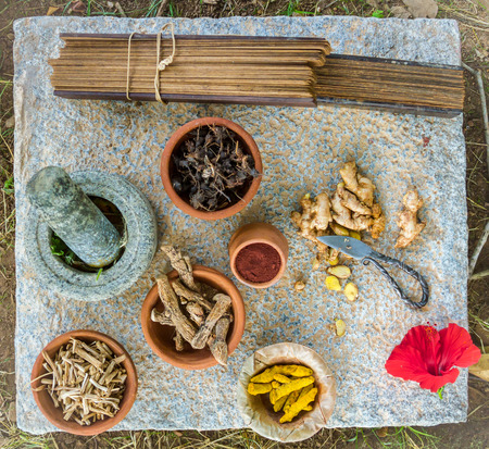 Traditional ayurvedic herbs and spices, along with a pestle and mortar and an ancient manuscript on Indian medicine.