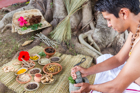A young man preparing ayurvedic medicine in the traditional manner under a banyan tree.