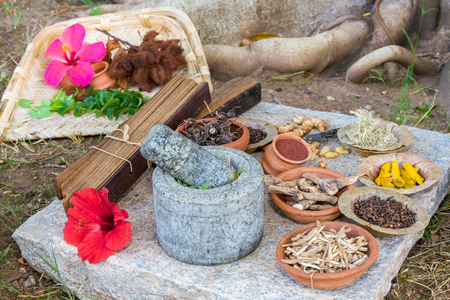 A traditional Ayurvedic apothecary with stone mortar and pestle, herbs and spices. Stock Photo