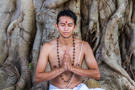dhyana: A young brahmin sits in meditation with folded palms under a banyan tree.