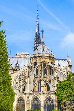 dame: Notre Dame, Paris