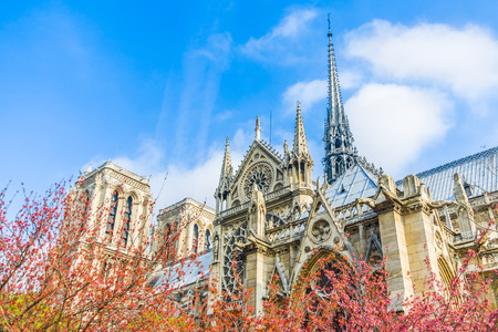 Notre Dame Cathedral in Paris, France.
