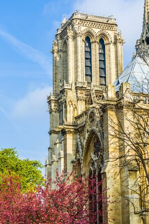 dame: Notre Dame Cathedral in Paris, France.