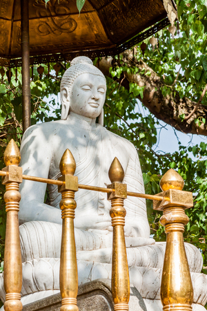 buddha sri lanka: A statue of Buddha at the Kelaniya temple in Sri Lanka. Stock Photo