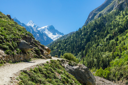 The Gangotri valley in the Indian Himalayas. Stok Fotoğraf - 57385179