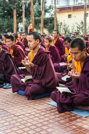 reciting: Kushalnagar, India - JUNE 25th 2009 - Buddhist Monks reading scripture in the monastery in Kushalnagar, India June 25th 2009. Editorial
