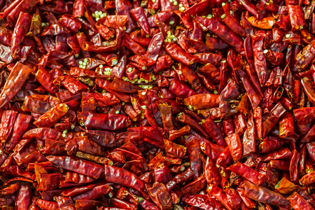 Hundreds of dried red chili peppers. Imagens