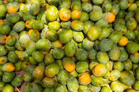 A pile of freshly harvested organic mangoes in South India.