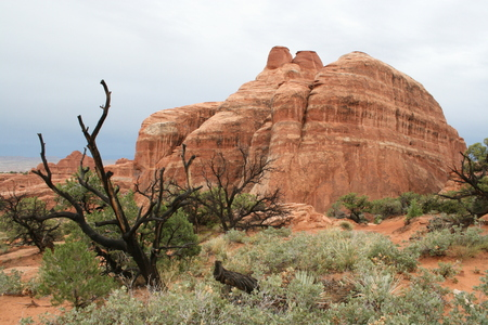 rock formation: Arches National Park rocks Stock Photo