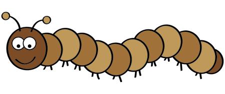 centipede: centipede Illustration
