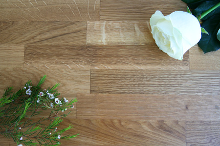 worktops: Frame white rose and gypsophila Stock Photo