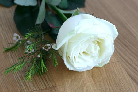 worktops: White rose on wood
