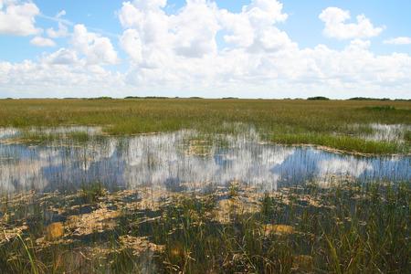 tourismus: Everglades Nationalpark