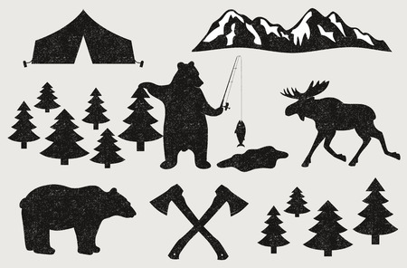 pine needle: Camping in the Wood Illustration