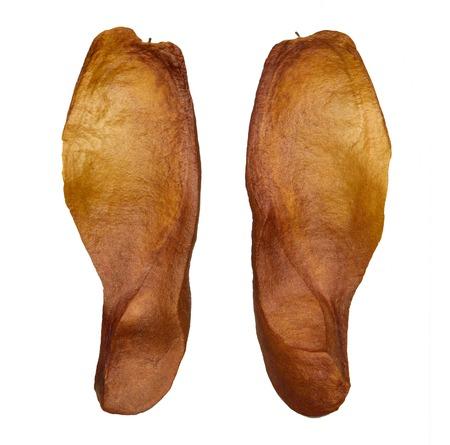 caoba: Semilla de caoba, un �rbol grande que la gente realmente toman esta madera para hacer casas. Foto de archivo