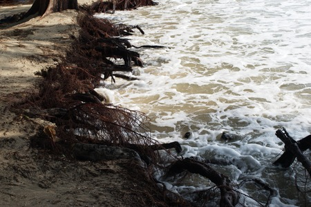 land slide: Sea erosion along the coast and beaches during the storm.