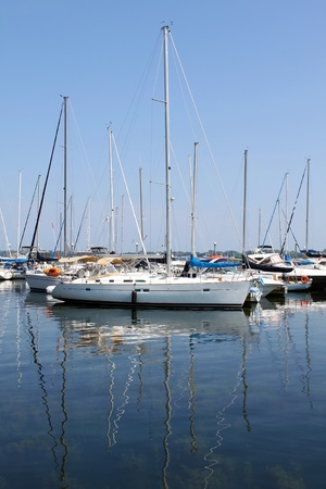 Sailboats at marina photo