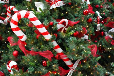 Close up of a Christmas tree