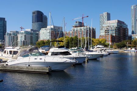 Luxury yachts in a downtown Toronto marina 스톡 콘텐츠