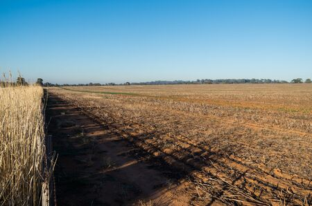 fenceline: A freshly harvested farm field in Dookie, in the Goulburn Valley, Australia Stock Photo