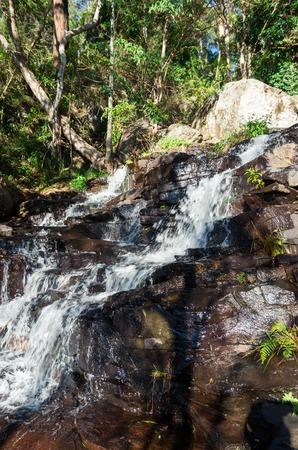 Cameron Falls waterfall on Mt Tamborine, in the Gold Coast hinterland in Australia. Stock Photo