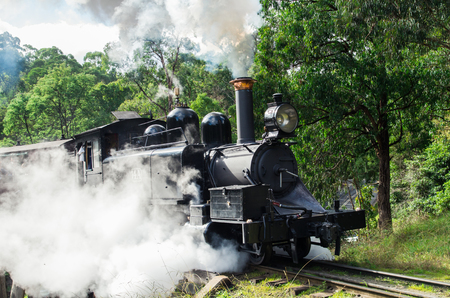 Puffing Billy steam train crossing a trestle bridge near Belgrave in the Dandenong Ranges. Puffing Billy is a popular tourist attraction. Stok Fotoğraf