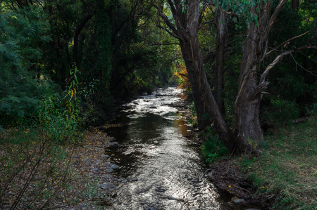 Ovens River flowing through Harrietville in the Alpine Shire of north-eastern Victoria, Australia. Foto de archivo - 118704435