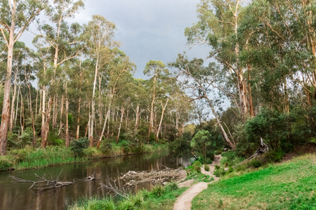 Walking track along the Yarra River in Warrandyte in the outer north-eastern suburbs of Melbourne Reklamní fotografie