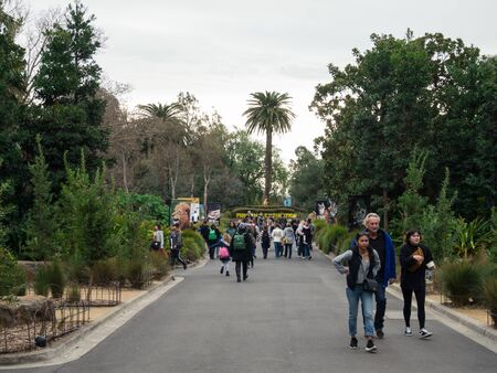Melbourne, Australia - August 4, 2018: The Royal Melbourne Zoological Gardens or Melbourne Zoo opened in 1862. This is the central avenue running through the zoo.
