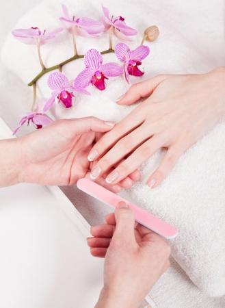 professional manicurist doing a manicure natural look  photo
