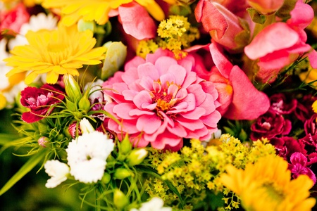 beautiful colorful collection of flowers spring summer celebration card macro photo