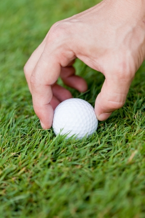 golf ball and iron on green grass detail macro summer outdoor playing golf  photo