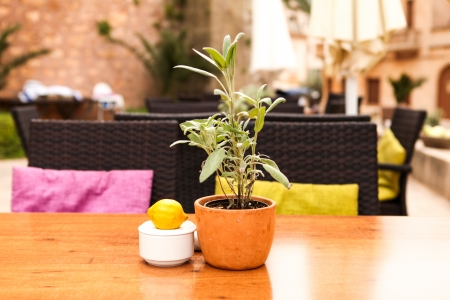 table flower decoration in cafe restaurant outdoor in summer mediterranean photo