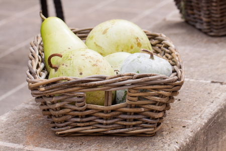 basketful: Harvest of fresh ripe pears displayed in a wicker basket on a wall outdoors at a farmers market or for a quick delicious healthy snack Stock Photo