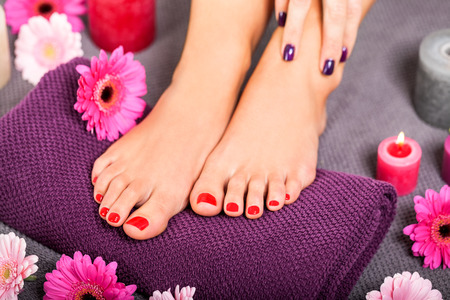 Overhead view of the bare feet of a woman with beautiful manicured red nails resting on a purple towel surrounded by fresh colourful pink gerbera daisies in a spa or beauty salon photo