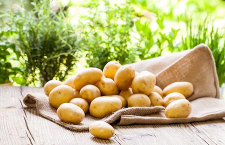 ファーム新鮮なポテト hessian 袋農民の素朴な木製のテーブルに表示される市場、ベジタリアンやビーガン料理で人気のある健康栄養価の高い根物野