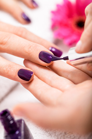 Woman having a nail manicure in a beauty salon with a closeup view of a beautician applying rich purple nail varnish with an applicator